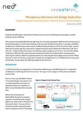 Phosphorus Removal And Sludge Reduction